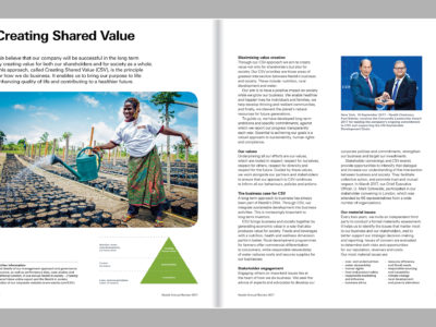Image de Annual report 2017