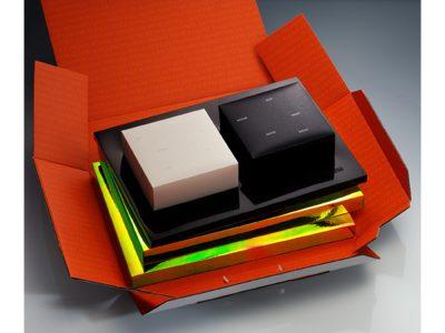 Image de Christmas gift development 2003